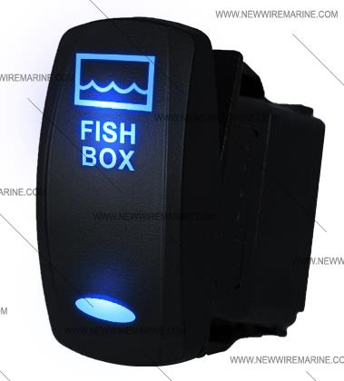 FISH_BOX_blue