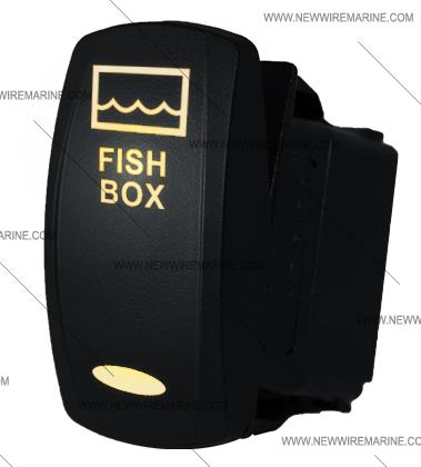 FISH_BOX_wwhite