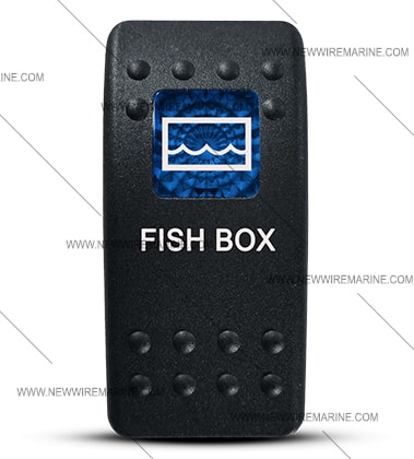 FISH_BOX_BLUE_SMALLw-min