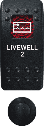Livewell 2